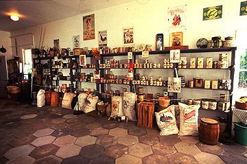 groceries.3.jpg